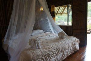 Khao Sok Jungle resort KSJR