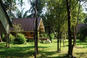 Khao Sok Jungle resort KSJR garden view