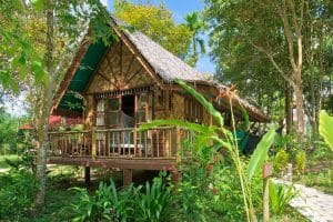 Our Jungle Camp Khao Sok bungalow outside