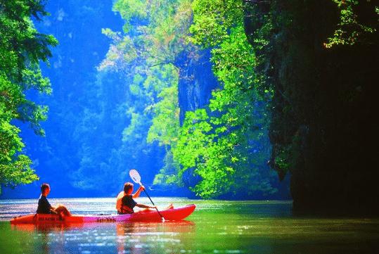Demi journée kayak dans la mangrove de Thalane